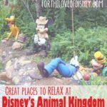 Great Spots to Relax at Walt Disney World: Animal Kingdom