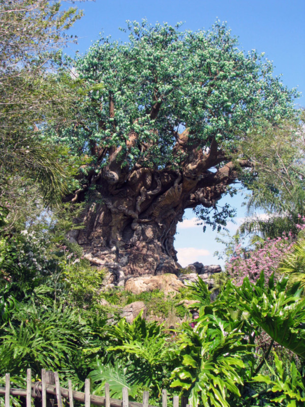 020 - tree of life 03
