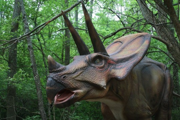 Kings Island Dinosaurs Alive exhibit
