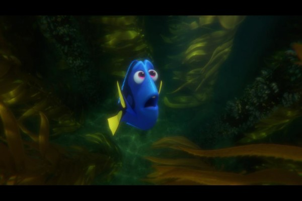 findingdory575a3fb286bf7