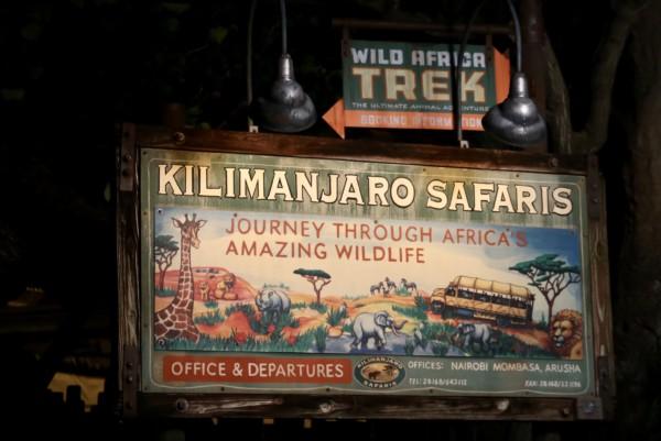 kilimanjaro safaris at night