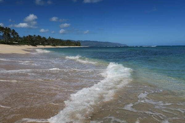 turtle-beach-laniakea