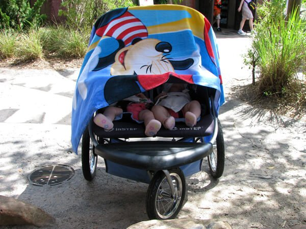 twin infants sleeping in a stroller at a theme park