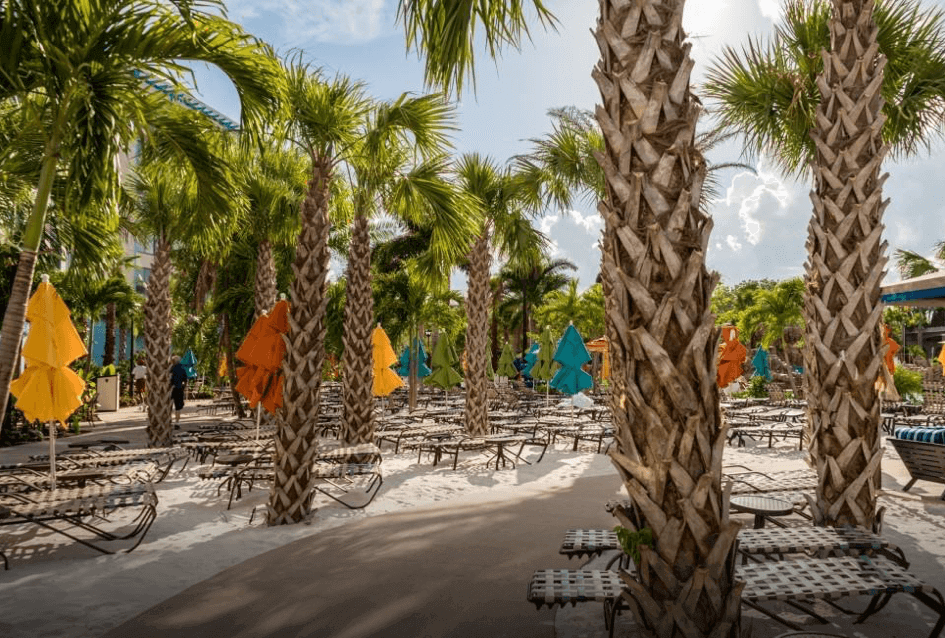 stunning palm trees and beaches at Loews Sapphire Falls Resort