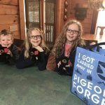 Why Your Family Should Visit Pigeon Forge, Tennessee This Year
