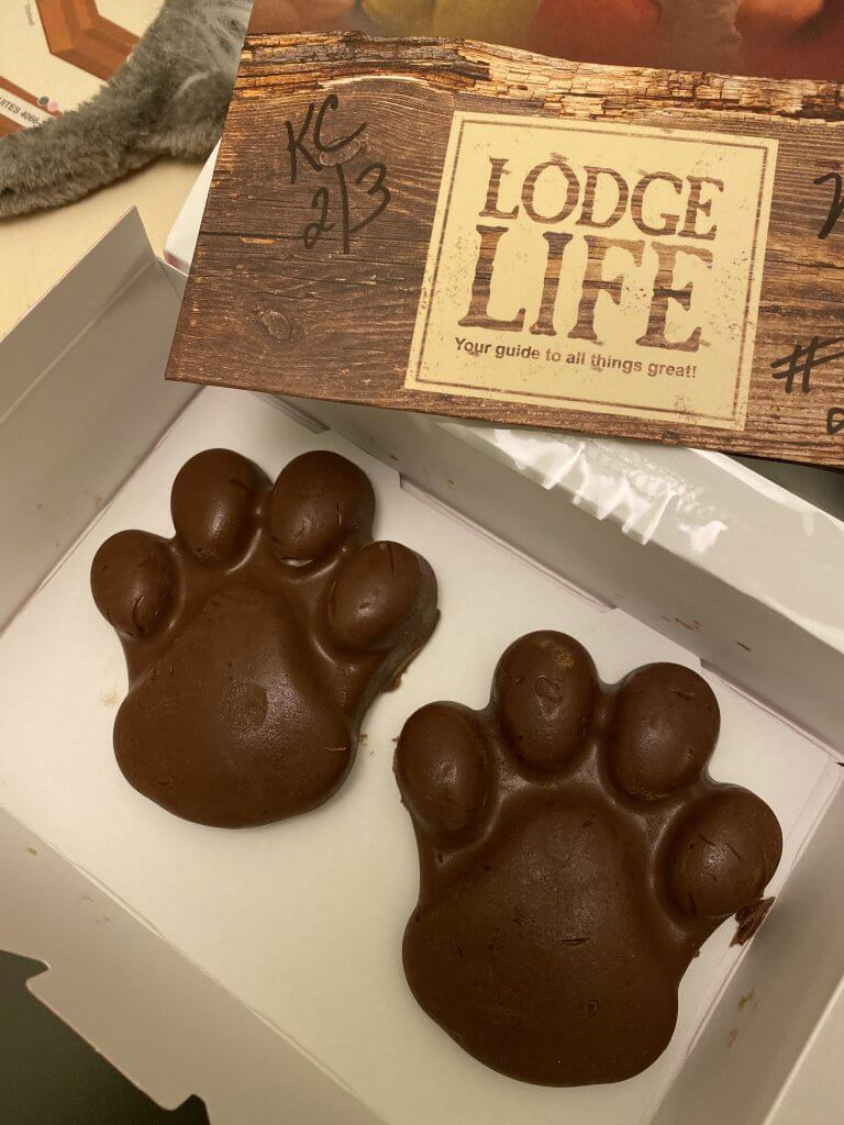 bear/wolf paw shaped chocolate truffles in Great Wolf Lodge room service box